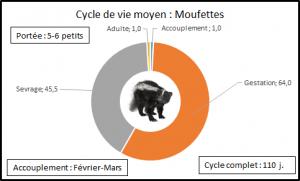 Moufettes